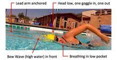 """The most frequent request I get from swimmers is: """"I just want to be able to breathe easy"""". This is for good reason, since clearly if you rotate to breathe and inhale more water than air this will completely interrupt …"""