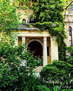 Cismigiu Garden - photo by Dana Stefanescu