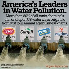 One fifth of all US water pollution is caused by four animal ag companies: Tyson, Cargill, Purdue, and Pilgrim's. These are mostly companies raising and killing chickens. http://veganstreet.com