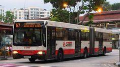 Du lịch Singapore có thể dùng xe bus