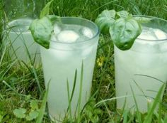 Summer Drinks, Glass Of Milk, Detox, Smoothie, Food And Drink, Lose Weight, Syrup, Alcohol, Essen