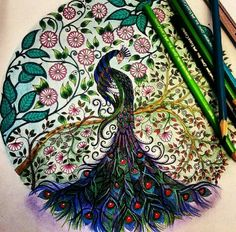 ... , Secret Garden, Johanna Basford, Enchanted Florest, Color Peacocks