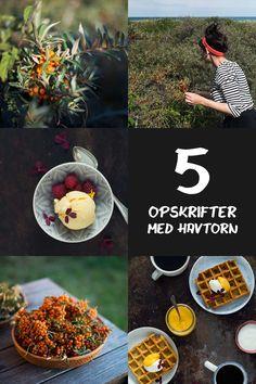 Her er fem nemme og lækre opskrifter med havtorn - Nordens mest eksotiske frugt. Her er både is, drinks, snacks og pandekager, som du kan lave derhjemme. Snacks, Table Decorations, Drinks, Eat, Ayurveda, Food, Tapas Food, Drinking, Appetizers