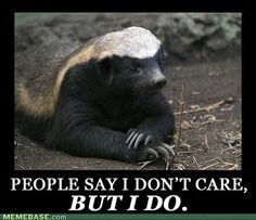 The honey badger really DOES care!