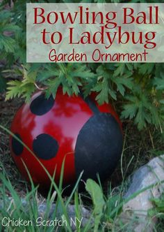 "{Bowling Ball} to {Ladybug Garden Ornament!}. So fun! and I have a bowling ball just ""begging"" to be repurposed!!"