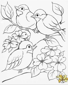 64 Trendy Ideas embroidery designs for kids coloring sheets Bird Drawings, Pencil Art Drawings, Art Drawings Sketches, Easy Drawings, Animal Drawings, Sketch Drawing, Sketching, Flower Coloring Pages, Coloring Book Pages
