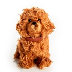The Queen's Treasures Doll Pet Accessory - Labradoodle Dog With Collar & Leash American Girl Doll Videos, American Girl Doll Pictures, Pet Cafe, Pet Sematary, Miniature Crafts, Little Pets, Collar And Leash, 18 Inch Doll, Doll Accessories