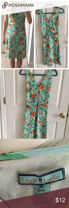 Blue floral dress This dress has a great pattern for spring and summer, also in great condition louie and lucie Dresses