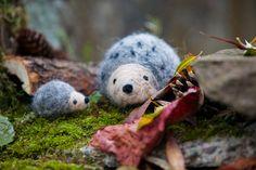 Große und kleine Igel, die sehen nicht nur im Herbstlaub und im Winterwald richtig süß aus, sondern auch als Miniglücksbringer für Deine besten Freunde oder Deine Geschwister. Natürlich kannst du mit Ihnen auch Spielen oder als Deko aufstellen. Die netten Igelfreunde machst du aus farbiger Filzwolle mit der Filznadel ganz leicht selber. Das Nadelfilzen ist … Continued