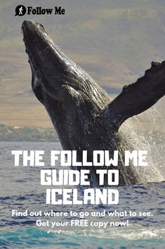 Get all the information you need to have a perfect stay in Reykjavik and Iceland. Find the best places to go, the best things to do, the best food to eat, all for FREE. Guide To Iceland, Tours In Iceland, Iceland Travel, European Travel Tips, Europe Travel Guide, Iceland Adventures, The Beautiful Country, Travel Around The World, Where To Go