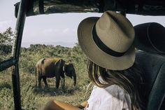 The ultimate 2 week sri lanka itinerary the wayfaress ravana falls in ella sri lanka Sri Lanka Itinerary, Arugam Bay, Sri Lanka Holidays, Spice Garden, Top Destinations, Beach Town, Grand Hotel, Lonely Planet, Where To Go