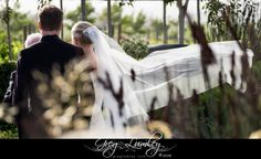 Ceremony Cavalli Stud Farm Wedding Venue.  Greg Lumley Photographer.