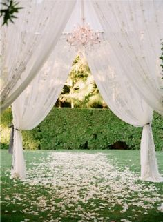Simple and intimate and nearly the extent of ceremony decorations. (Maybe 1/3). The petals are a for sure (just white, no particular flower) and the sheer fabric would be lovely if we can find a way to execute.