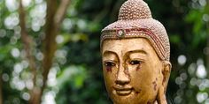 You can't really put Zen into words, but you can share some of its timeless wisdom in ways that lead you on the path to…