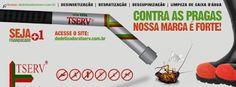 BLOG DOS INSETOS - ASSOCIAÇÃO BRASILEIRA DE FRANCHISING: TSERV FRANQUIA