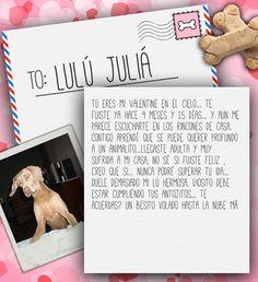 Valentine's Day Note for Lulú Juliá from Lilian de Juliá on 3MillionDogs.com