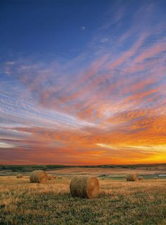 ✮ Amazing Sunset over Pasture