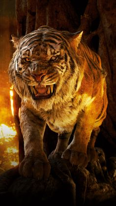 The Jungle Book Phone Wallpaper Lion Live Wallpaper, Wild Animal Wallpaper, Tiger Wallpaper, Tiger Images, Lion Images, Majestic Animals, Animals Beautiful, Cute Animals, Lion Quotes