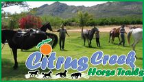 Citrus Creek in the Western Cape, Olifants River, Citrusdal offers Caravan, Camping, Chalet and Self-Catering Accommodation. Horse Trails, Caravan, South Africa, Camping, River, Campsite, Campers, Rivers, Tent Camping