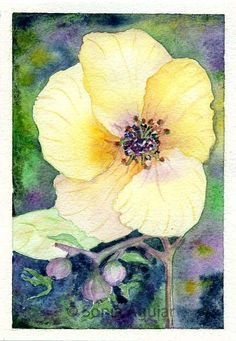 """Original Watercolor Flower by Sonia Aguiar. """"A New Day"""". Available."""