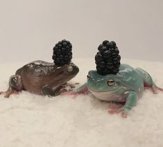 Cute Reptiles, Reptiles And Amphibians, Sapo Frog, Animal Original, Pet Frogs, Frog Art, Frog And Toad, Cute Little Animals, Funny Animals