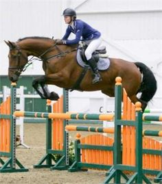 Horse and rider education - cathy taylor full, schooling and competition livery http://www.equineclassifieds.co.uk/Horse/cathy-taylor-full-schooling-and-competition-livery-listing-811.aspx#.U5q_3EATCZY