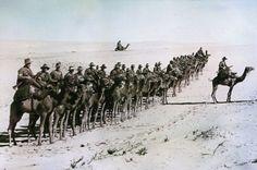 Century of Violence : What World War I Did to the Middle East / Bernhard Zand + Spiegel International | #historierio