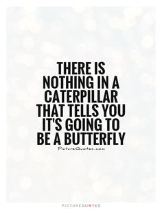 There is nothing in a caterpillar that tells you it's going to be a butterfly…