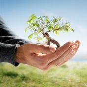 Rein in die Laufschuhe und raus aus der Komfortzone !http://healthyblog.info/gluecklicher-leben/rein-in-die-laufschuhe-und-raus-aus-der-komfortzone/