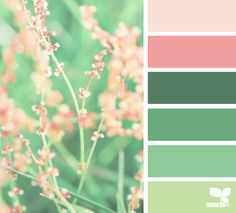Design Seeds® | for all who ❤ color | nature hues