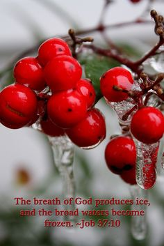 The breath of God produces ice and the broad waters become frozen. Job: 37:10