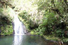 Otanewainukue, New Zealand