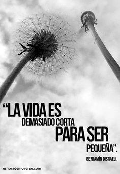 """""""La vida es demasiado corta para ser pequeña"""" - Benjamín Disraeli -"""