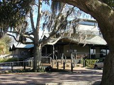 Crazy Crab - My favorite restaurant on Hilton Head SC
