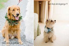 #coisinhasqueamamos: Cachorros na cerimônia de casamento | Blog do Casamento - O blog da noiva criativa! | Idéias criativas