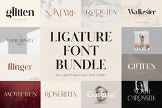 Classy Fonts, Stylish Fonts, Elegant Fonts, Handwritten Typography, Bold Typography, Font Logo, Minimalist Font, Feminine Fonts, Modern Serif Fonts