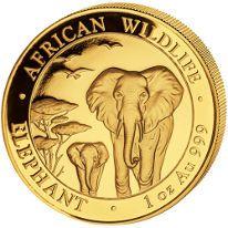 Somalian Gold Elephants