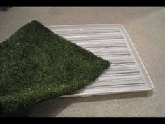 How To Make an Indoor / Outdoor Pet Bathroom, Starring Dash the Beagle - YouTube