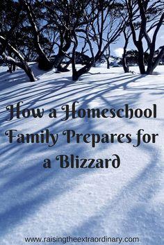 homeschool snow days   homeschool snow day   do homeschoolers have snow days   blizzard   homeschool during blizzard   homeschool fun   homeschool   homeschooling