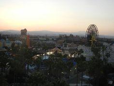 Kingdom Konsultant Travel Blog: Surf's Up at Disney's Paradise Pier Hotel!  http://kingdomkonsultanttravel.blogspot.com/2012/05/surfs-up-at-disneys-paradise-pier-hotel.html