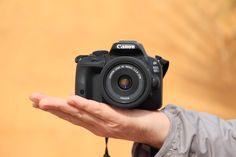 Aujourd'hui je vous présente mon nouvel appareil photo réflex : le Canon EOS 100D. Je partage également mon avis et mes premières photos.