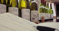 Selo Reserva - Vinho é paixão