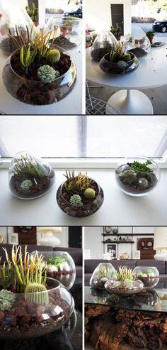 Terrarium na kaktusy DIY/ DIY terrarium for succulents