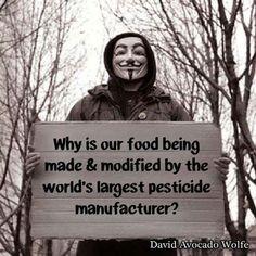 Illuminati, Pseudo Science, Religion, Food For Thought, Environment, Wisdom, America, Thoughts, Feelings