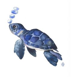 Print of baby sea turtle watercolor painting - textured fine art poster of cute blue sea turtle, kids wall art, watercolor wall artwork by FernOriginalArt on Etsy Watercolor Sea, Watercolor Texture, Watercolor Animals, Watercolor Paintings, Watercolor Tattoo, Sea Turtle Painting, Sea Turtle Art, Sea Turtle Drawings, Baby Sea Turtles