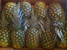More Pineapples. Awaiting their fate, ie a spicy chutney. Perfect with curries and lamb.