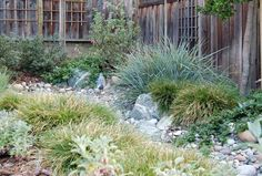 Dry creek bed gardens really can fix a wide variety of gardening issues. River Rock Landscaping, Landscaping With Rocks, Front Yard Landscaping, Landscaping Ideas, Backyard Ideas, Mulch Landscaping, Patio Ideas, Sloped Garden, Garden Beds