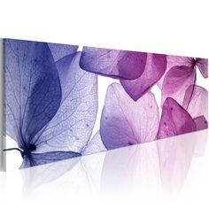 Obraz - Delicate petals