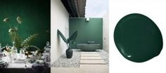 Microcement najaarstrends dark green