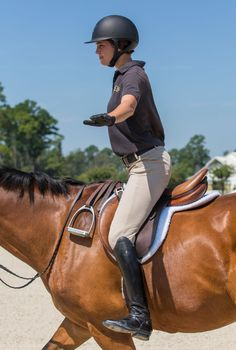 Solidify your foundation and improve your riding skills with personalized longe lessons.